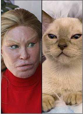 Jocelyn Wildenstein ve güzel bir kedi:)